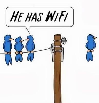he-has-wifi